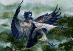 The Angry Harpy