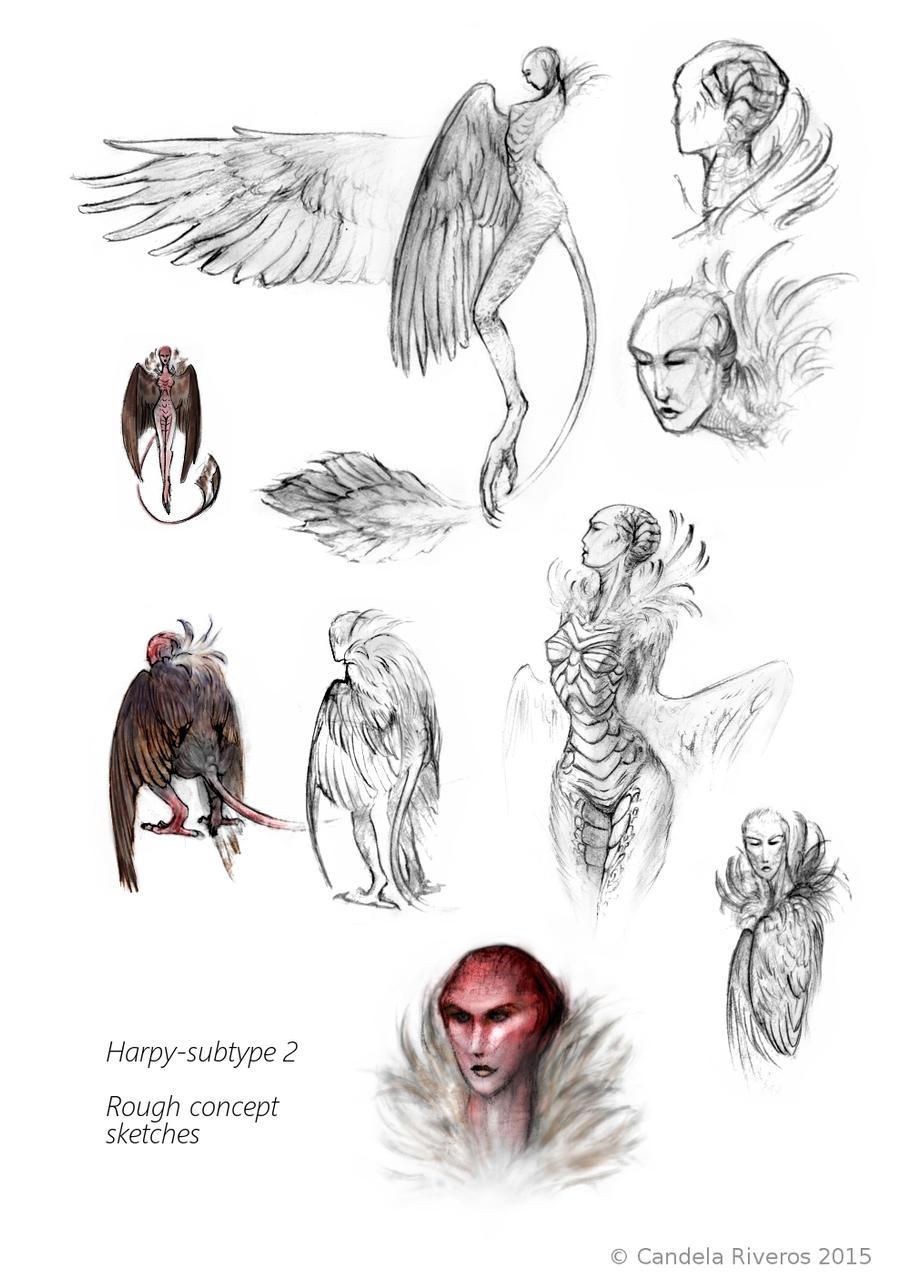Harpy roughs-