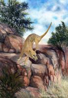 Thylacine by YemaYema