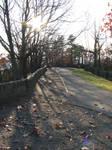 Path Stock 2