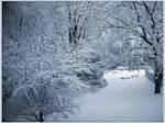 .:Snow Stock2:.