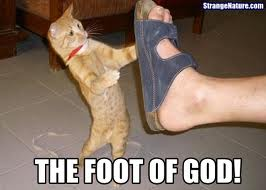 Foot Of God- Funny Cat by Monipanesiu