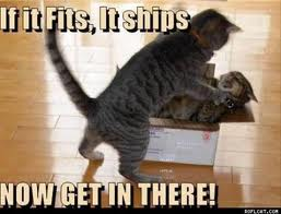 Fits It Ships by Monipanesiu