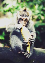 Banana Phone by AnjaRoehrich