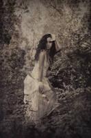 Vintage princess by Silecia
