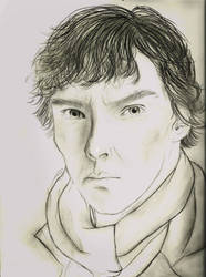 The world's only consulting detective.