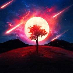 Tree Vision