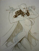 Catwoman New York 2010 by TerryDodson