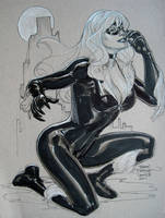 Black Cat ECCC 2011 by TerryDodson