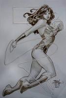 Wonder Woman SDCC2011 by TerryDodson