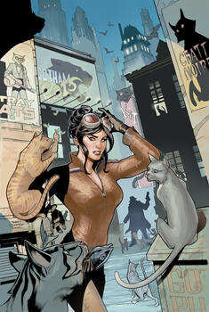 Catwoman 25 Cover Final