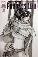 Princess Leia from SDCC by TerryDodson