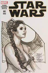 NYCC Princess Leia Sketch by TerryDodson
