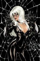 Black Cat #2 Variant Cover