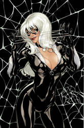 Black Cat #2 Variant Cover by TerryDodson