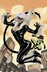 BLACK CAT 7 Cover