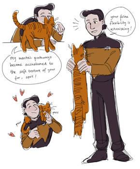 felis catus is your taxonomic nomenclature