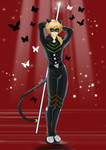 Chat Noir - my vision