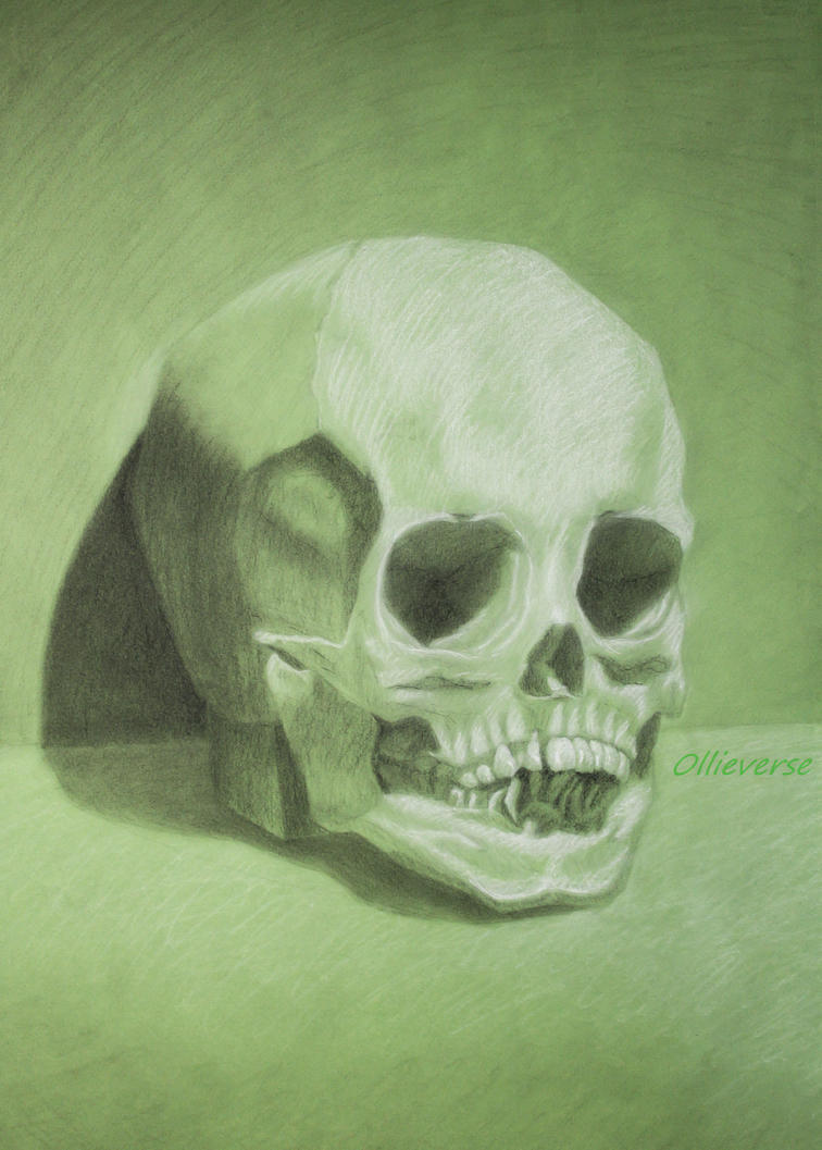 Skull by Ollieverse