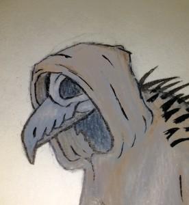 Nedwind's Profile Picture