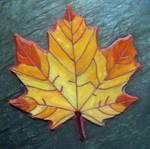 Maple Leaf by sandevolver