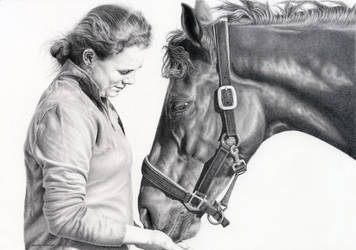 Commissioned Horse Portrait - Graphite by andreamichael