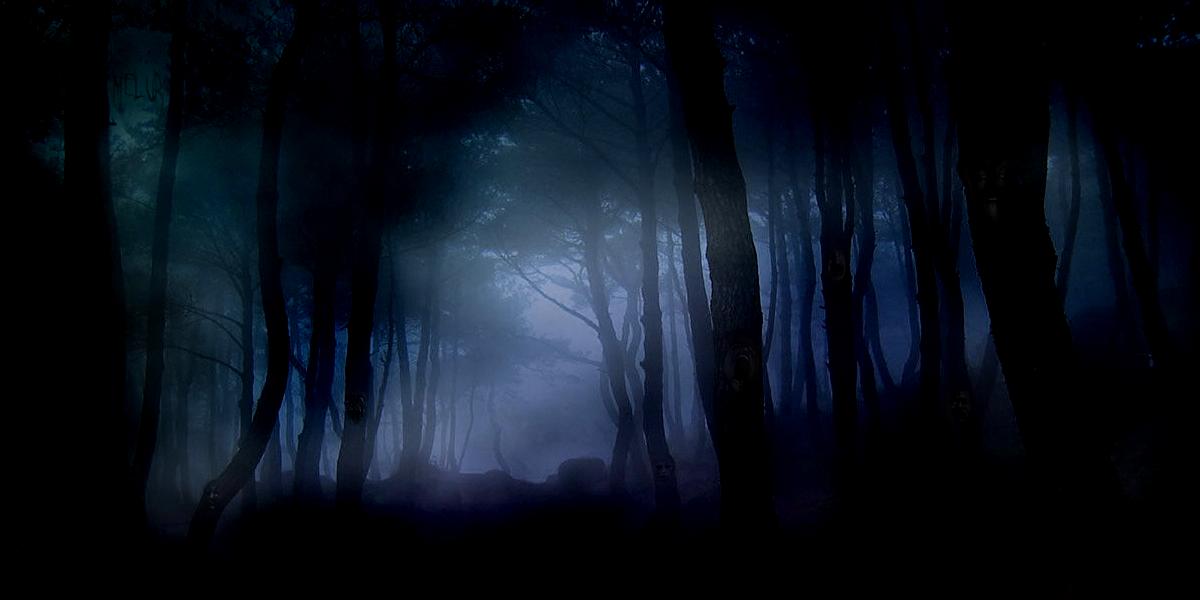 Shadowy Forest by Melurinn