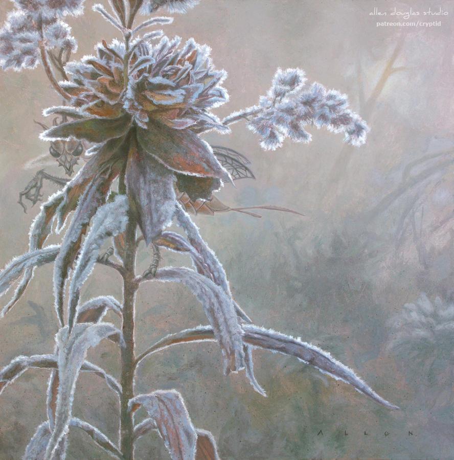 Unseelie in the Shire by allendouglasstudio