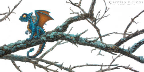 Blue-frilled Clubtail by allendouglasstudio