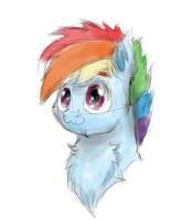 Rainbow Dash owo by LW9510