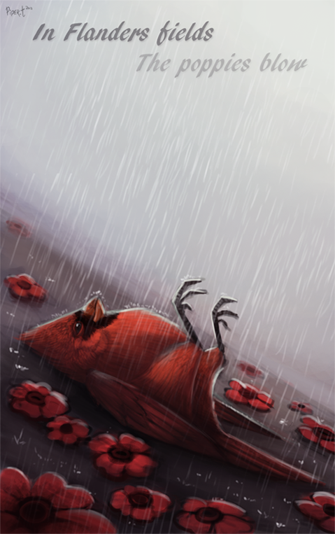 Daily 10 - Flander's Feilds (50 Minutes) by Cryptid-Creations