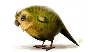 Day 566. Kakapo
