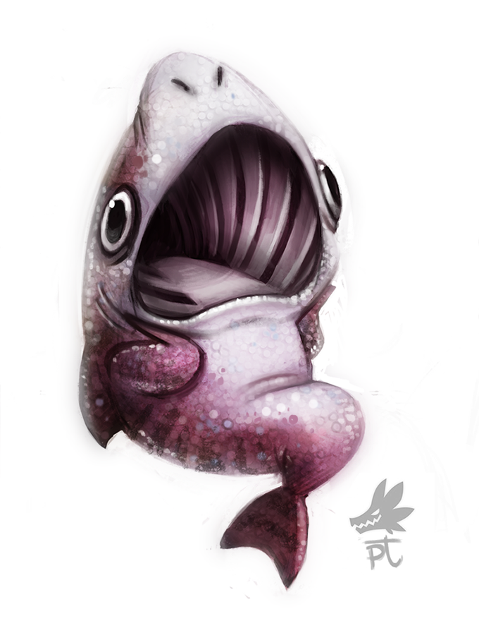 Daily Paint #634 - ERMEGERD Basking Shark by Cryptid-Creations
