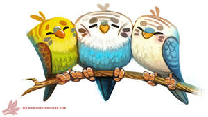 Daily Paint #1121. My Old Budgies