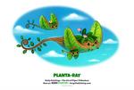 Daily 1332. Planta-Ray