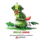 Day 1375. Melon-Collie