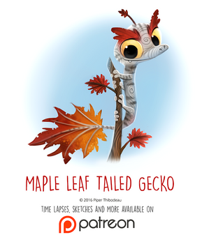 Day 1443. Maple Leaf-tailed Gecko
