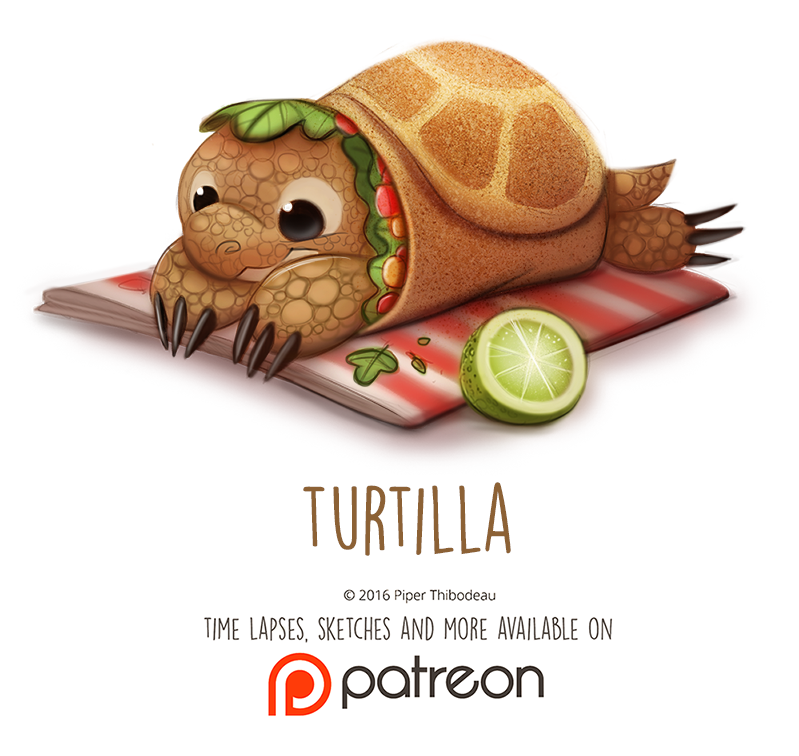 Daily Paint 1466. Turtilla