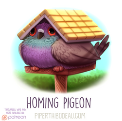 Daily Paint 1622. Homing Pigeon