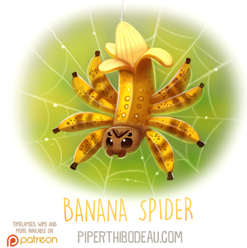 Daily Paint 1623. Banana Spider