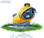 Daily Paint 1987# Rain Puggle