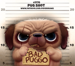 Daily Paint 2176. Pug Shot