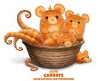 Daily Paint 2316. Carrats
