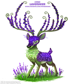 Daily Paint 2464. Lavendeer