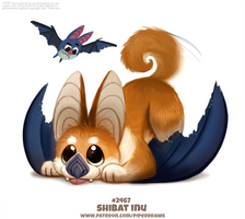 Daily Paint 2467. Shibat Inu