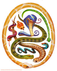 #2523. Serpents - Designs