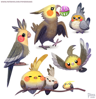 #2555. Cockatiel - Designs