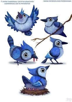 #2571. Blue Jay - Designs