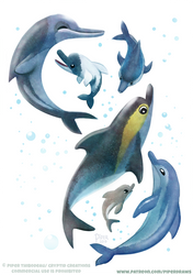 #2575. Dolphins - Designs