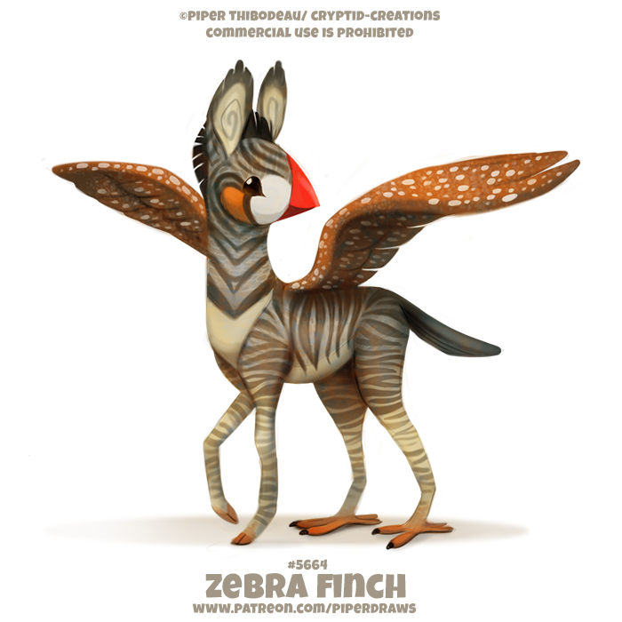 #2664. Zebra Finch - Word Play
